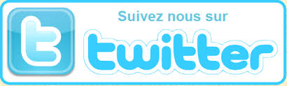 bouton twitter